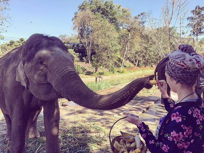 Tham quan vườn thú trong thác Prenn Đà Lạt