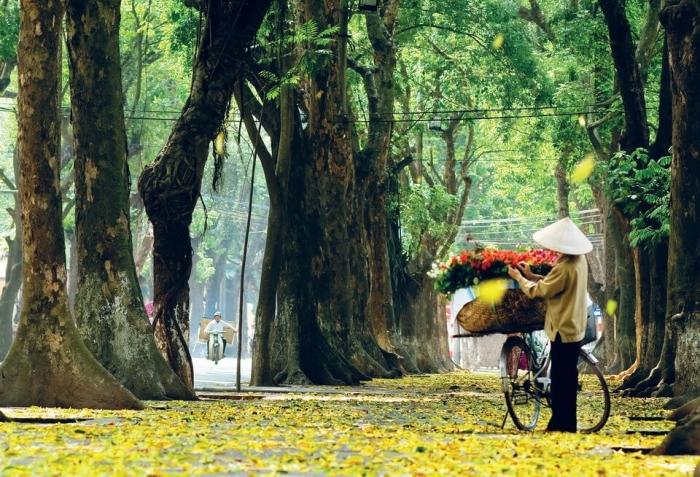 Nao lòng trước 4 điểm phải đến vào mùa thu ở Việt Nam